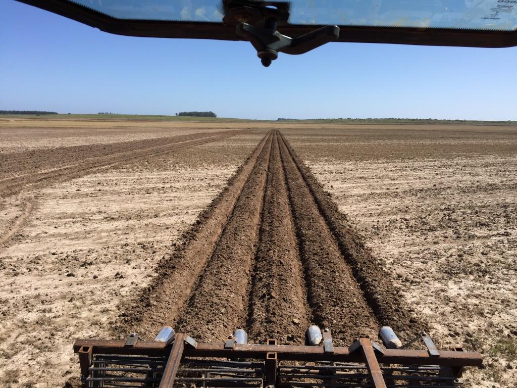 buy popular b0399 8b422 Optamos por realizar a construção dos sulcos antecipadamente, com piloto  automático e RTK , para melhorar a agilidade no plantio da soja que será  realizado ...